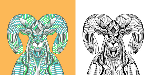 Coloring book The Big horn sheep head