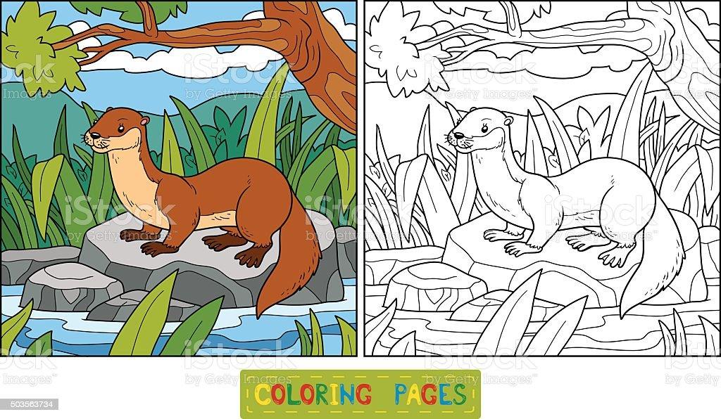 Ilustración de Libro Para Colorear Nutria Y De Fondo y más banco de ...