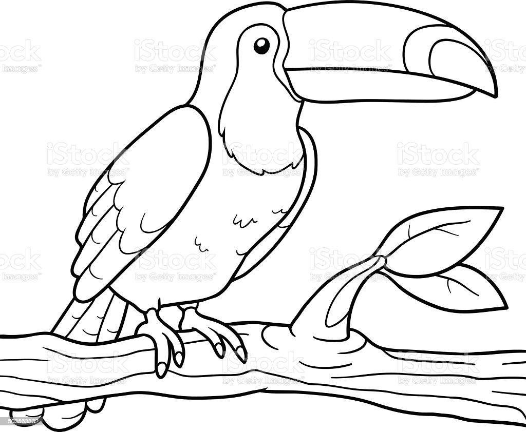 Livre de coloriage toucan cliparts vectoriels et plus d 39 images de activit 503563832 istock - Coloriage toucan a imprimer ...