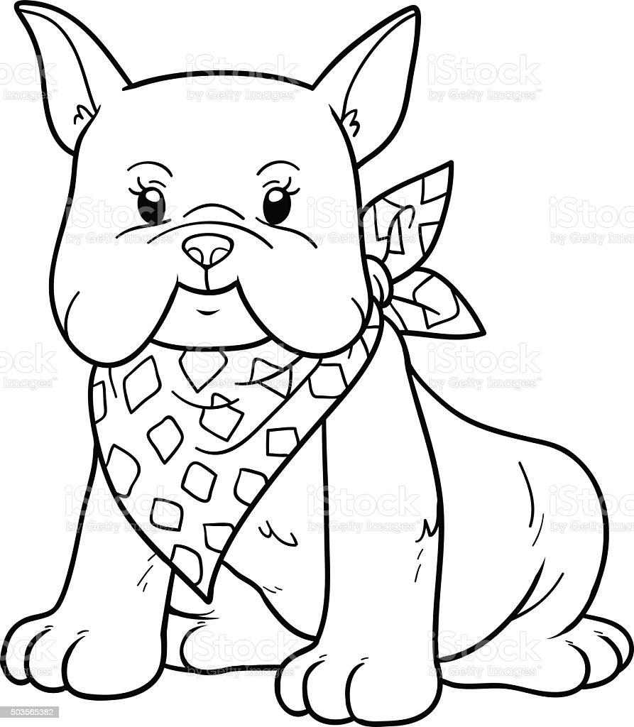 Libro Da Colorare Bulldog Francese Immagini Vettoriali Stock E