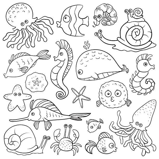 カラーのご予約(シーライフ) - お絵かき点のイラスト素材/クリップアート素材/マンガ素材/アイコン素材