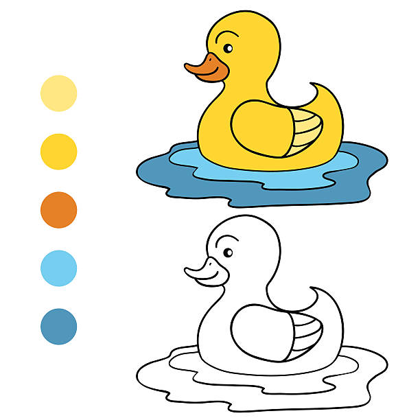 Best Swimming Duck Illustrations, Royalty-Free Vector ...