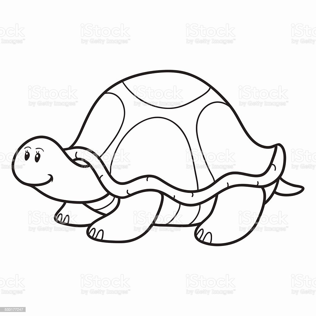 Coloring Book Turtle Royalty Free Stock Vector Art
