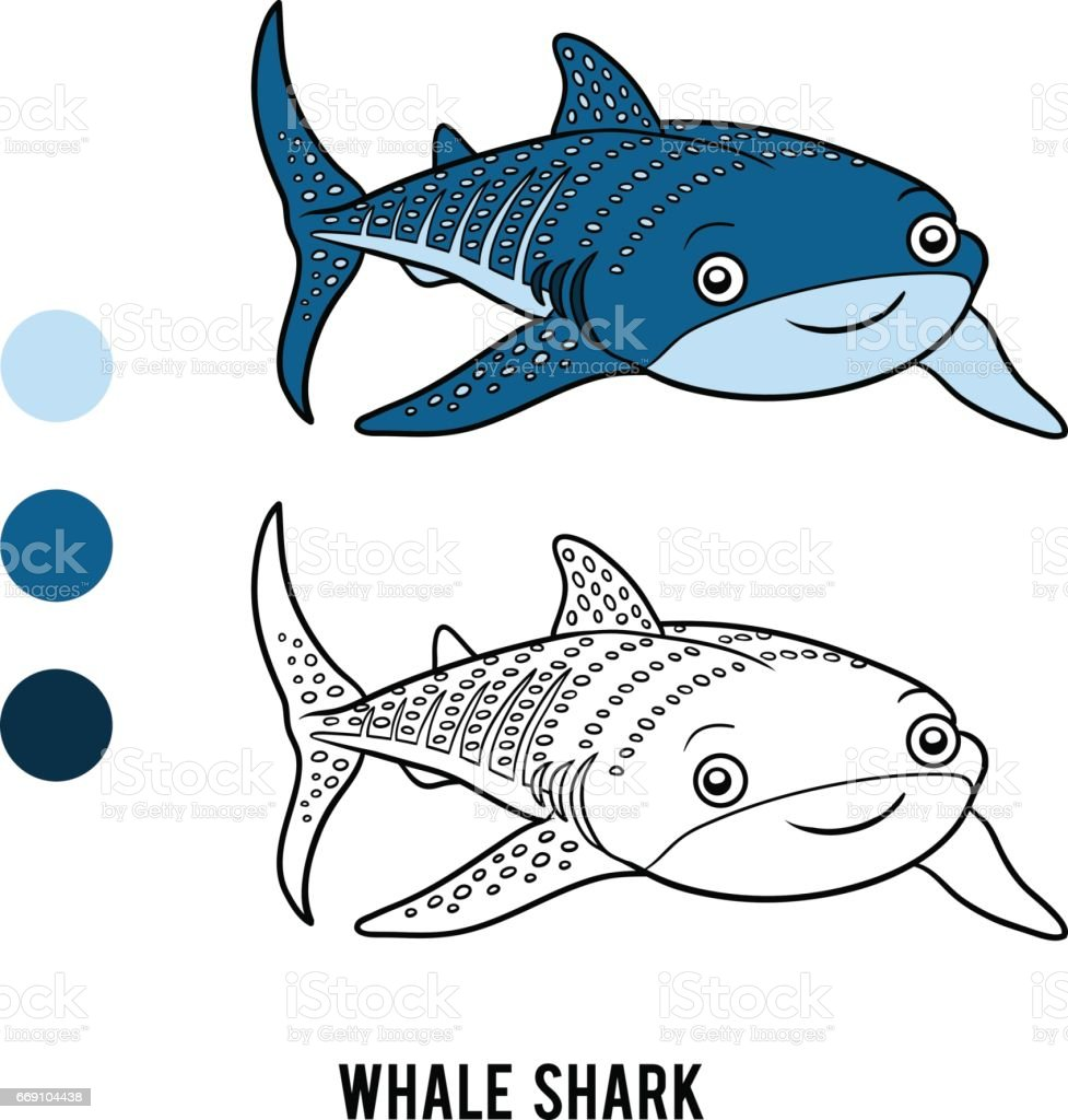 Coloring book, Whale shark vector art illustration