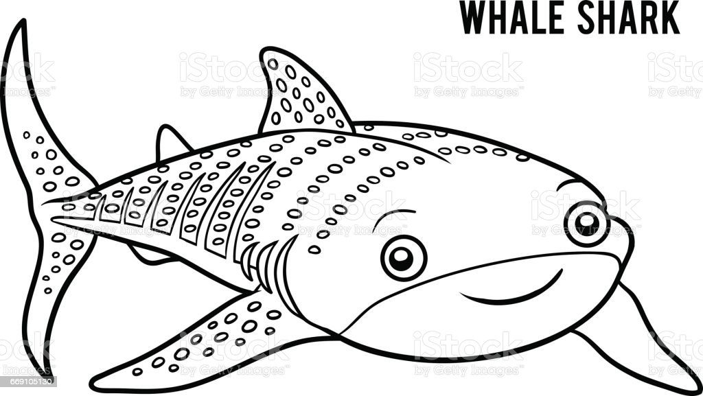 Coloring Book Whale Shark Stock Vector Art More Images of Animal