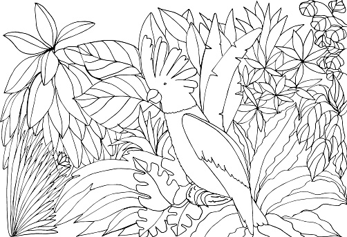 Coloring book with a parrot in the rainforest. Vector illustration. A bird in the jungle. Suitable for greeting cards, games, books, background, design.