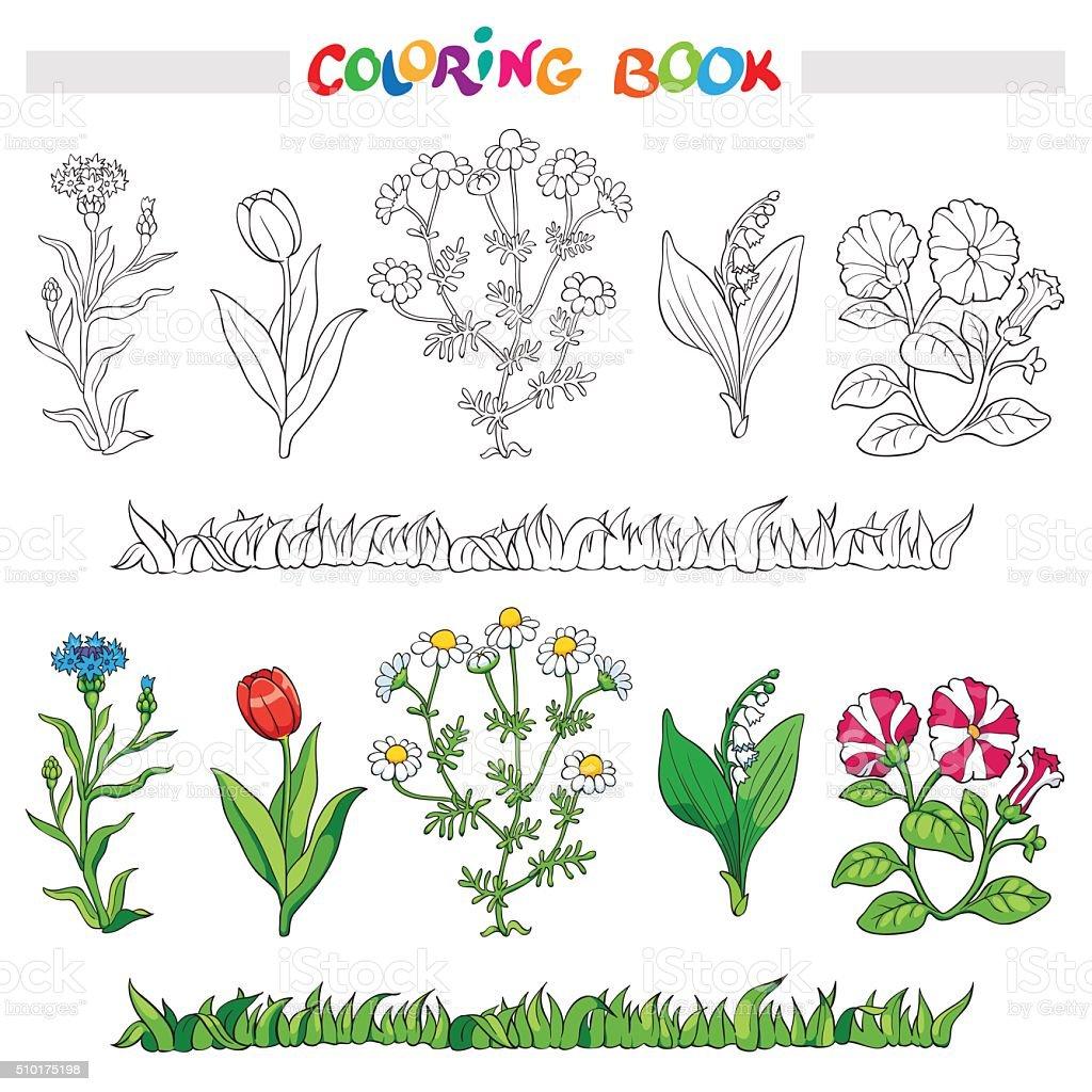 Libro Para Colorear Con Flor Conjunto Ilustración De Vectores - Arte ...