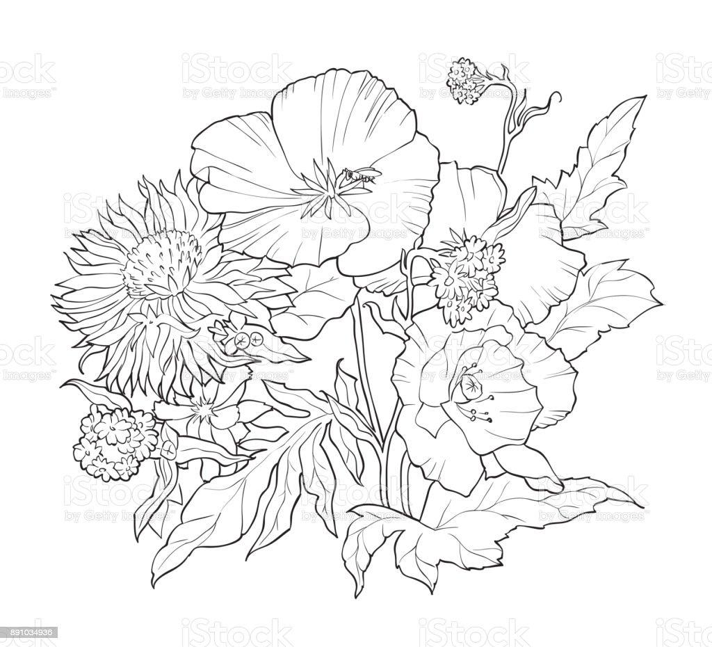 Elle çizilmiş çiçekler Ile Boyama Kitabı Siyah Beyaz Resim Stok
