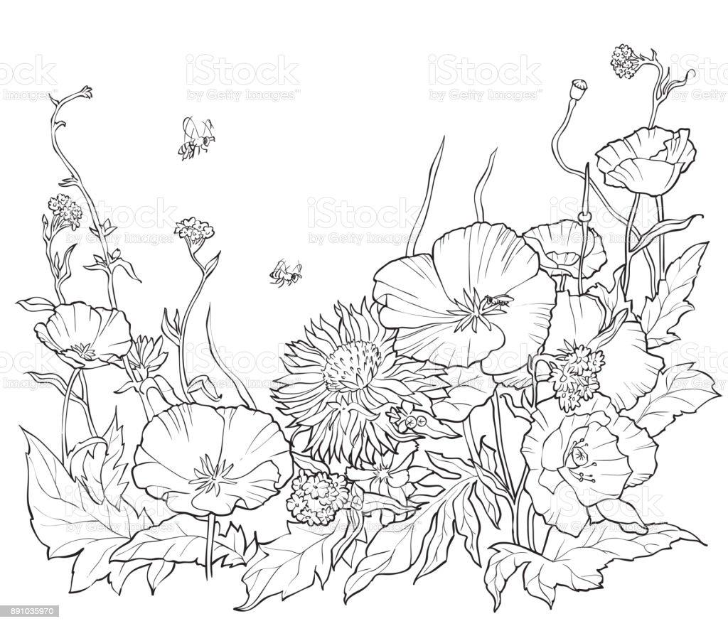 Ilustracion De Libro Para Colorear Con Flores Dibujado A Mano