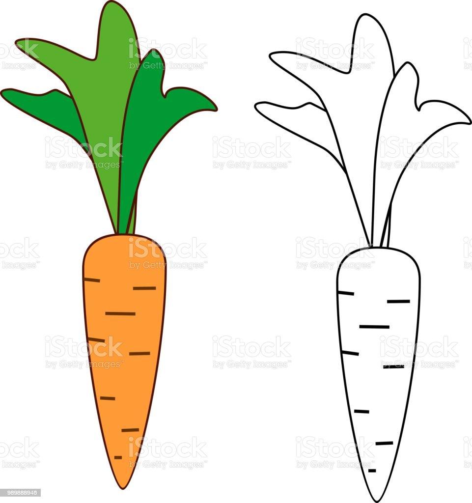 Ilustración De Zanahoria De Dibujos Animados Para Colorear Y