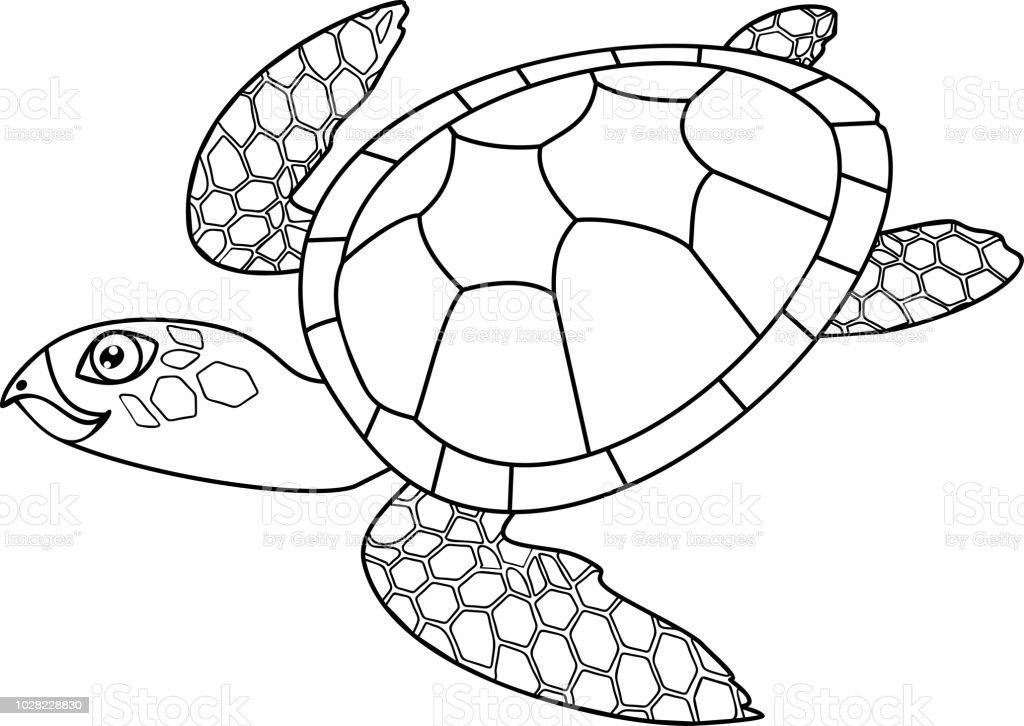 Malvorlagen Erwachsenen Niedlichen Cartoon Meeresschildkröten ...
