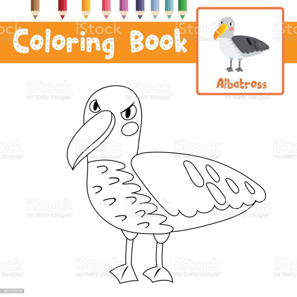 Boyama Sayfasi Albatros Illustrasyon Vektor Stok Vektor Sanati