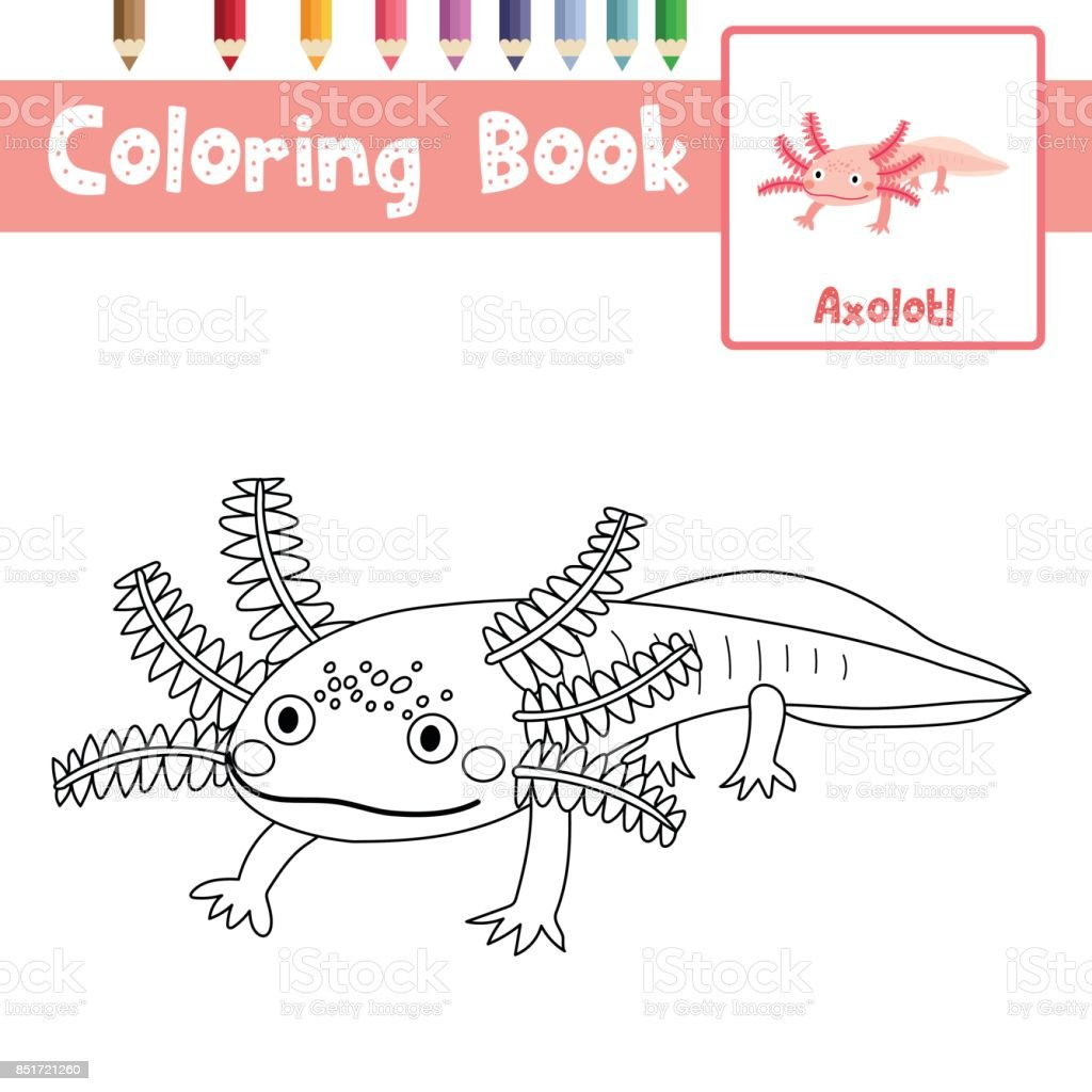 Coloring Page Axolotl Mexican Salamander Vector Illustration Royalty Free Coloring  Page Axolotl Mexican Salamander Vector