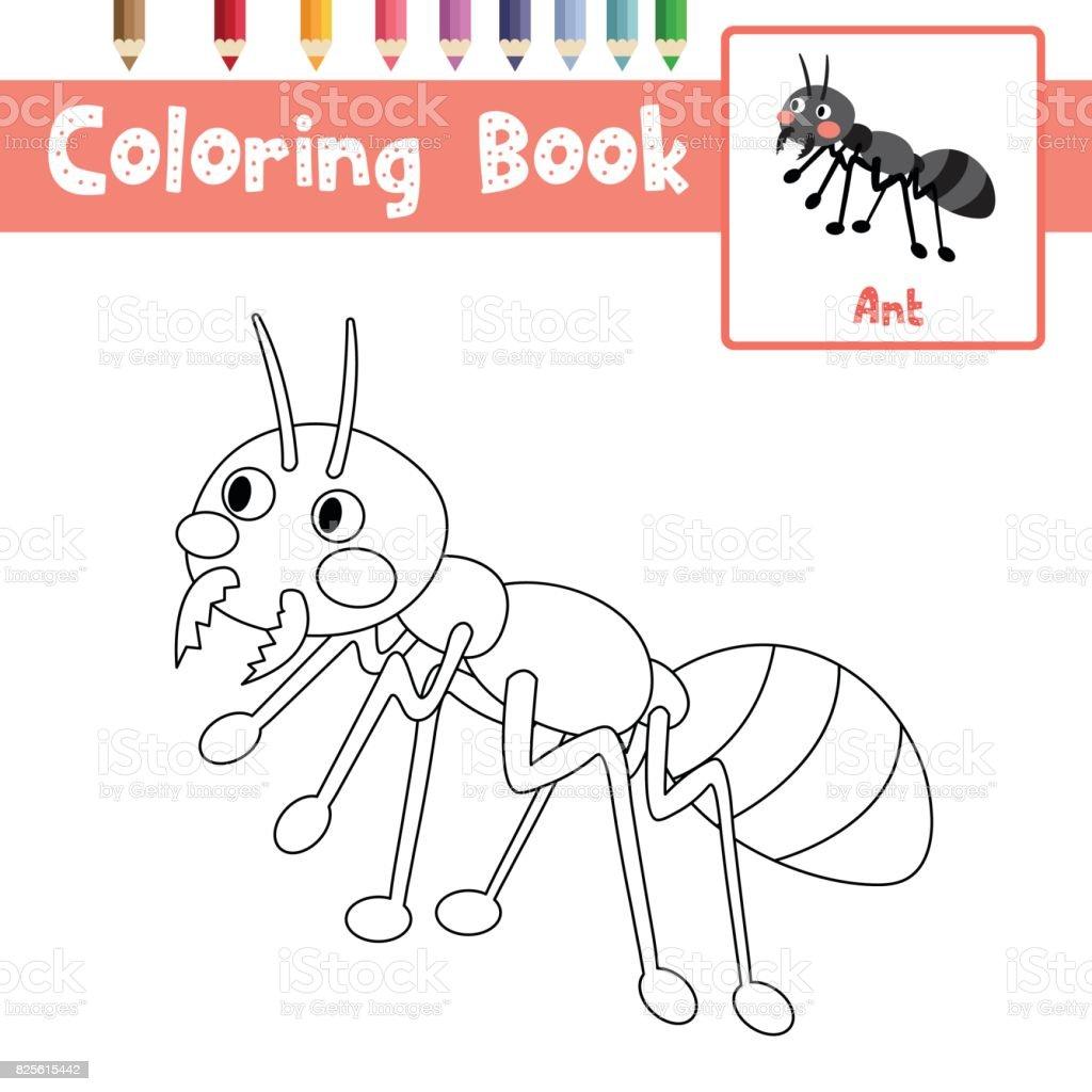 Boyama Sayfa Siyah Karıncalar Vektör çizim Stok Vektör Sanatı