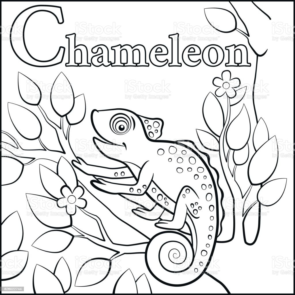 Coloring Page Cartoon Animals Alphabet C Is For Chameleon Stock ...