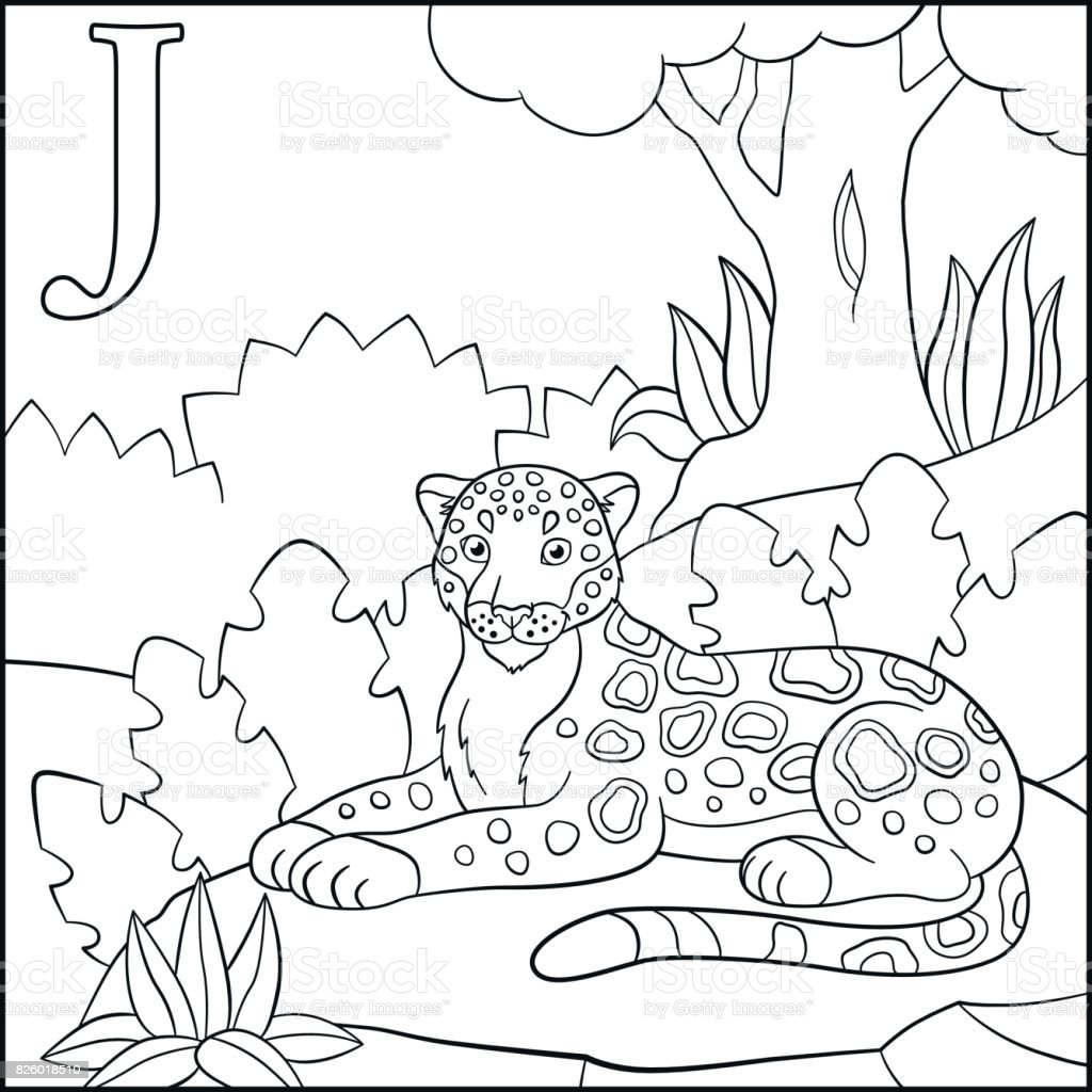 Coloring Page Cartoon Animals Alphabet J Is For Jaguar Stock Vector