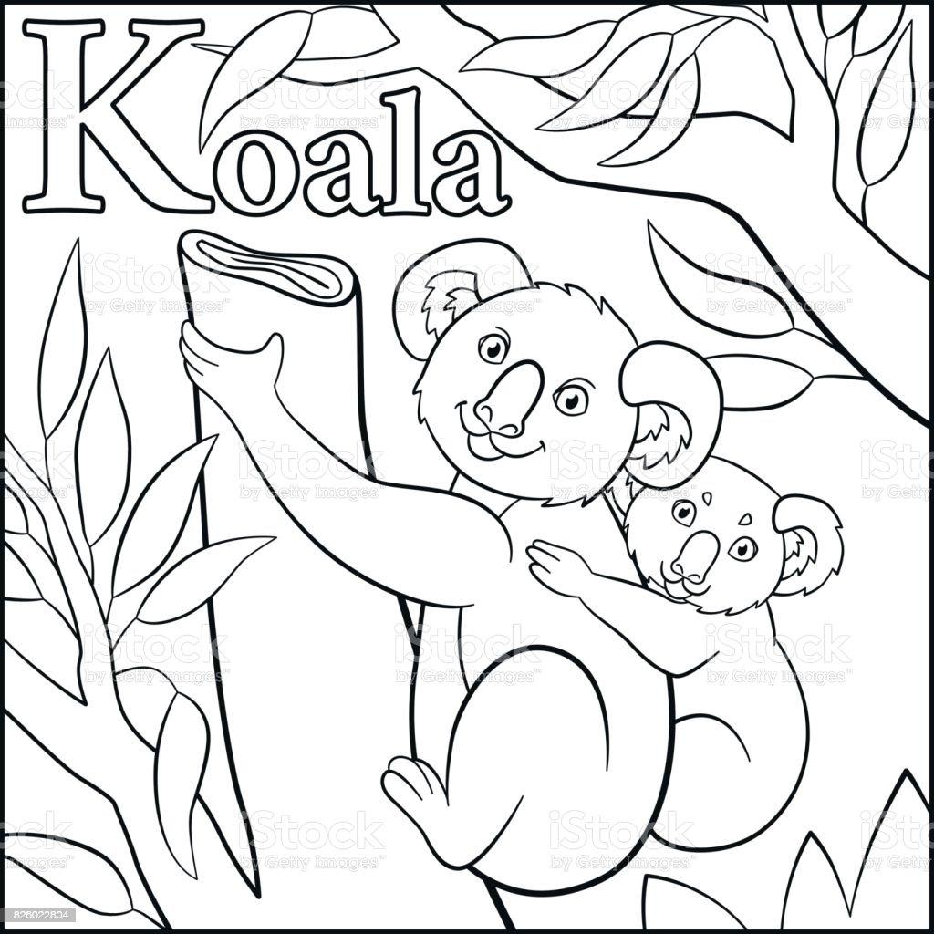 Boyama Sayfası Karikatür Hayvanlar Alfabe K Koala Için Var Stok