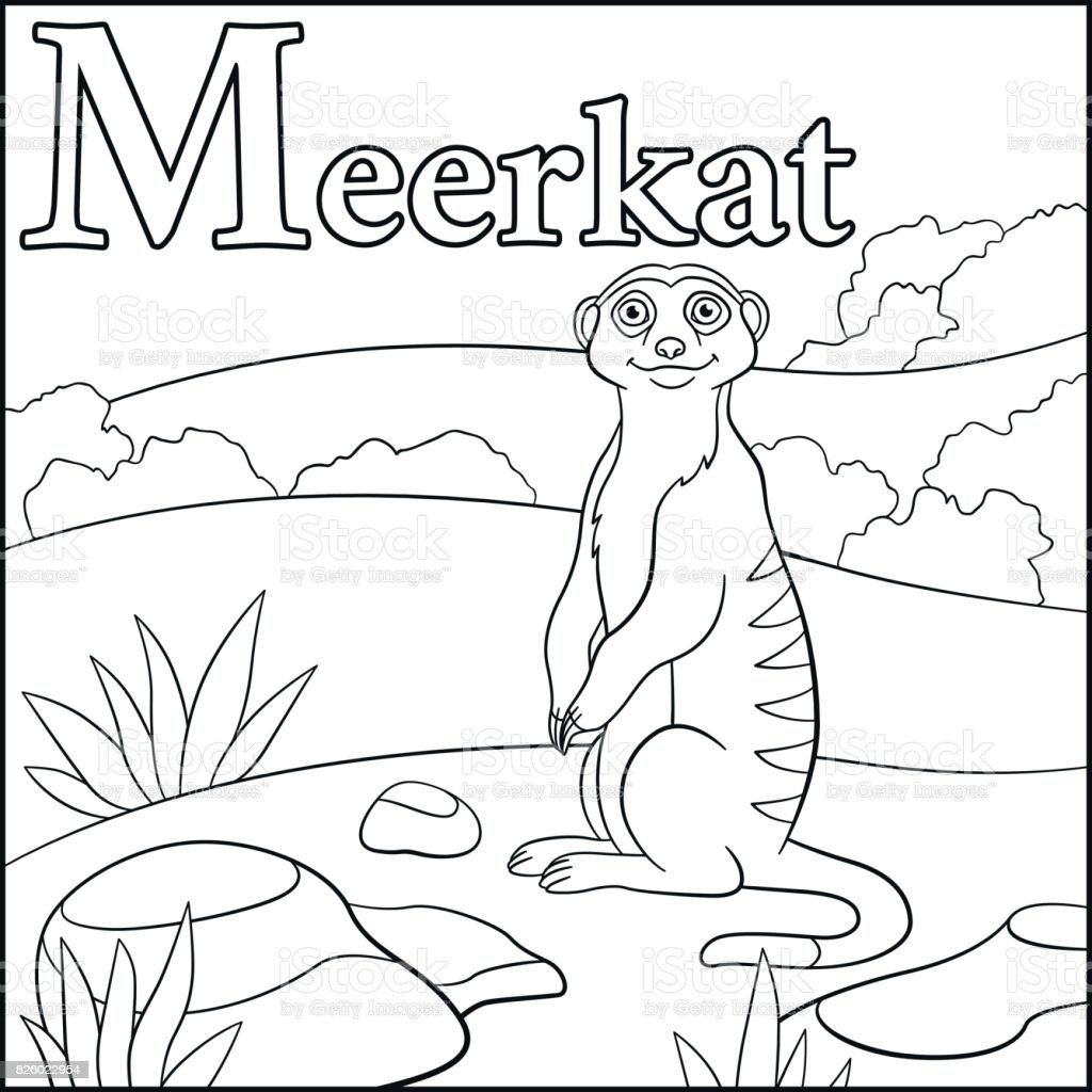 Coloring Page Cartoon Animals Alphabet M Is For Meerkat Royalty Free