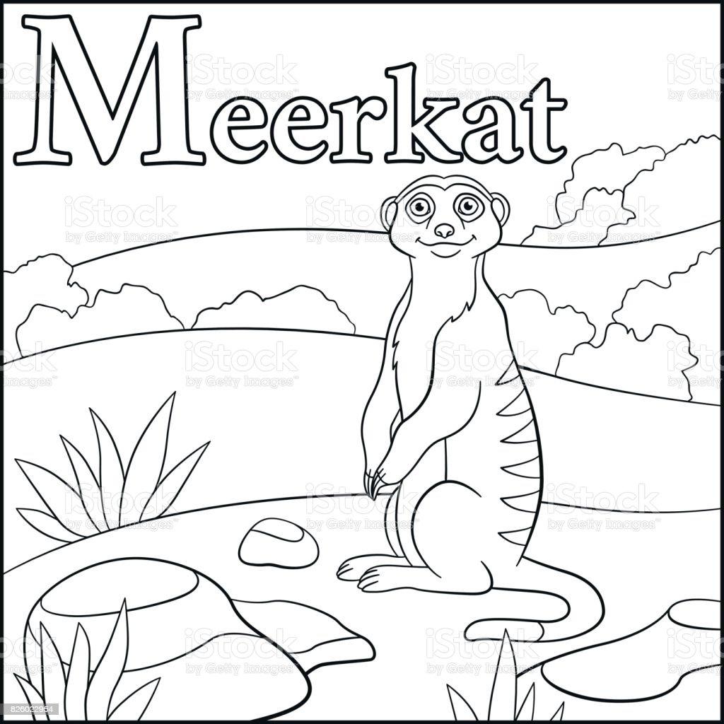 Coloring Page Cartoon Animals Alphabet M Is For Meerkat Stock Vector ...