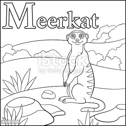meercat coloring pages - photo#16