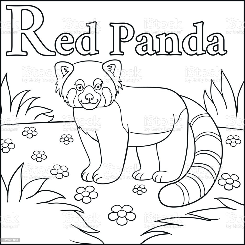 Coloring Page Cartoon Animals Alphabet R Is For Red Panda Royalty Free