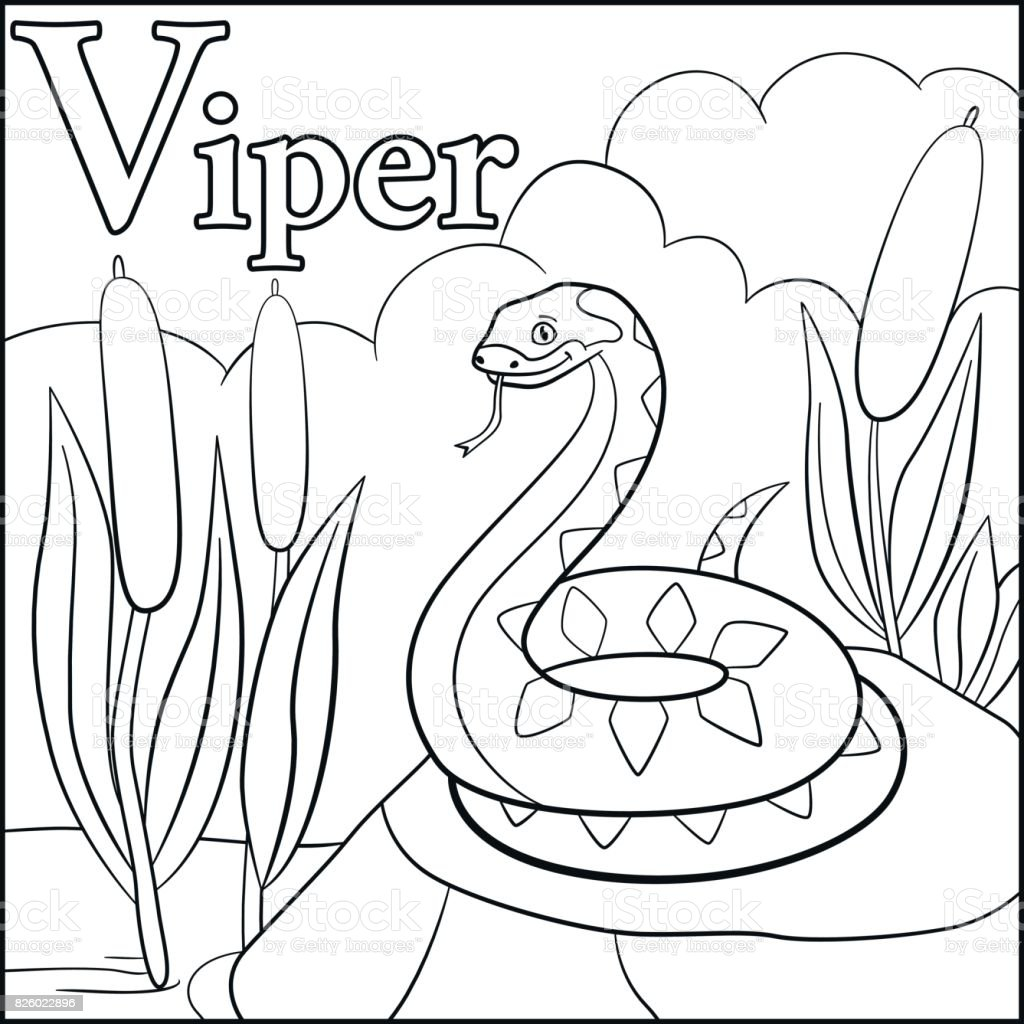 Coloring Page Cartoon Animals Alphabet V Is For Viper Royalty Free Stock