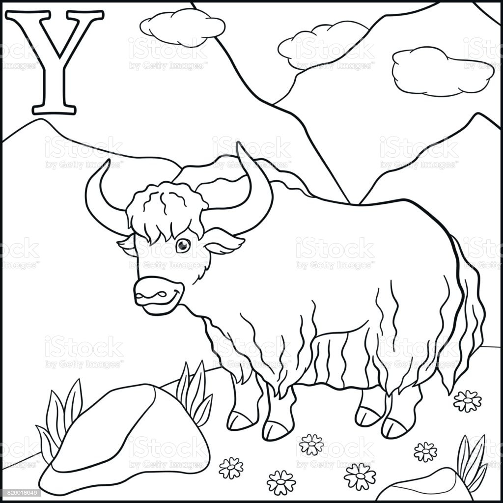 Coloring Page Cartoon Animals Alphabet Y Is For Yak Royalty Free Stock