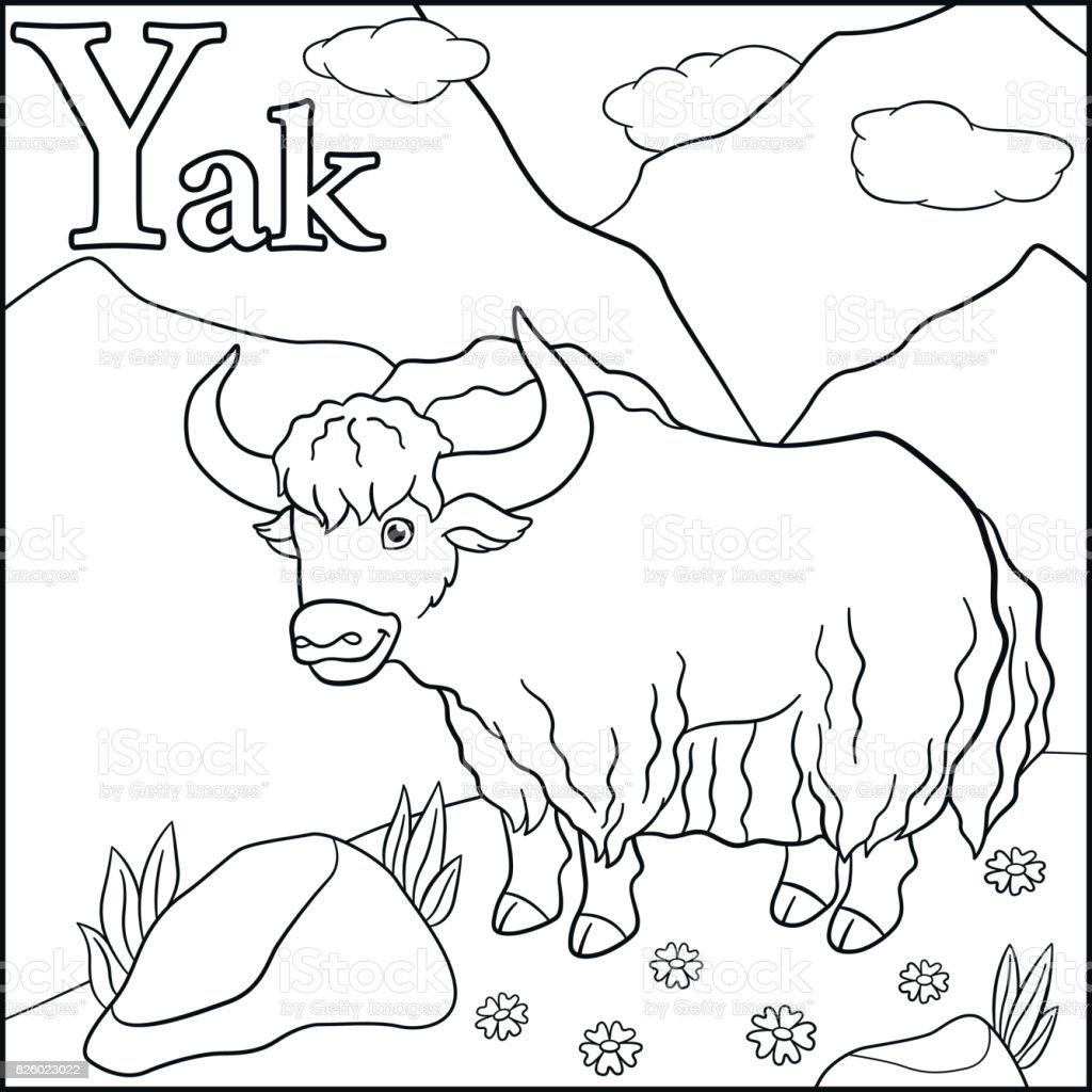 Malvorlagen Cartoon Tiere Alphabet Y Ist Für Yak Stock Vektor Art ...
