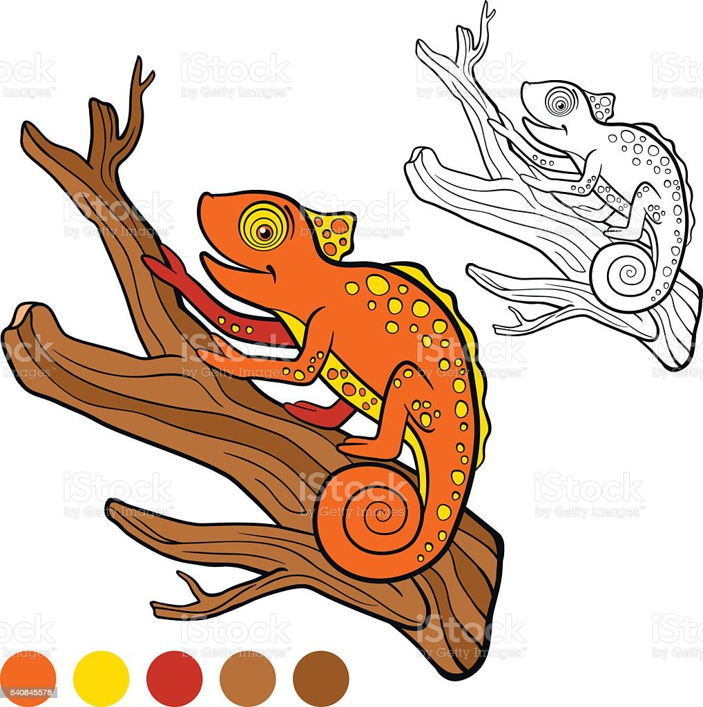 Coloring Page Color Me Chameleon Little Cute Orange Royalty Free