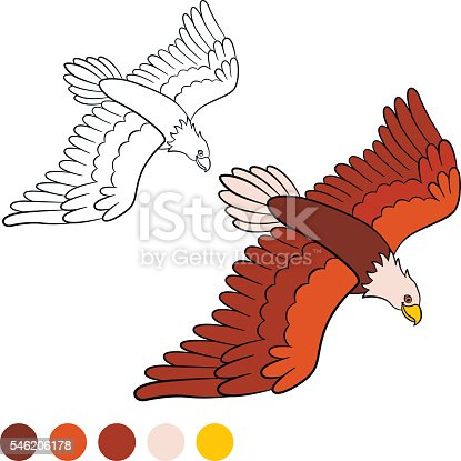istock Coloring page. Color me: eagle. Cute bald eagle flying ...