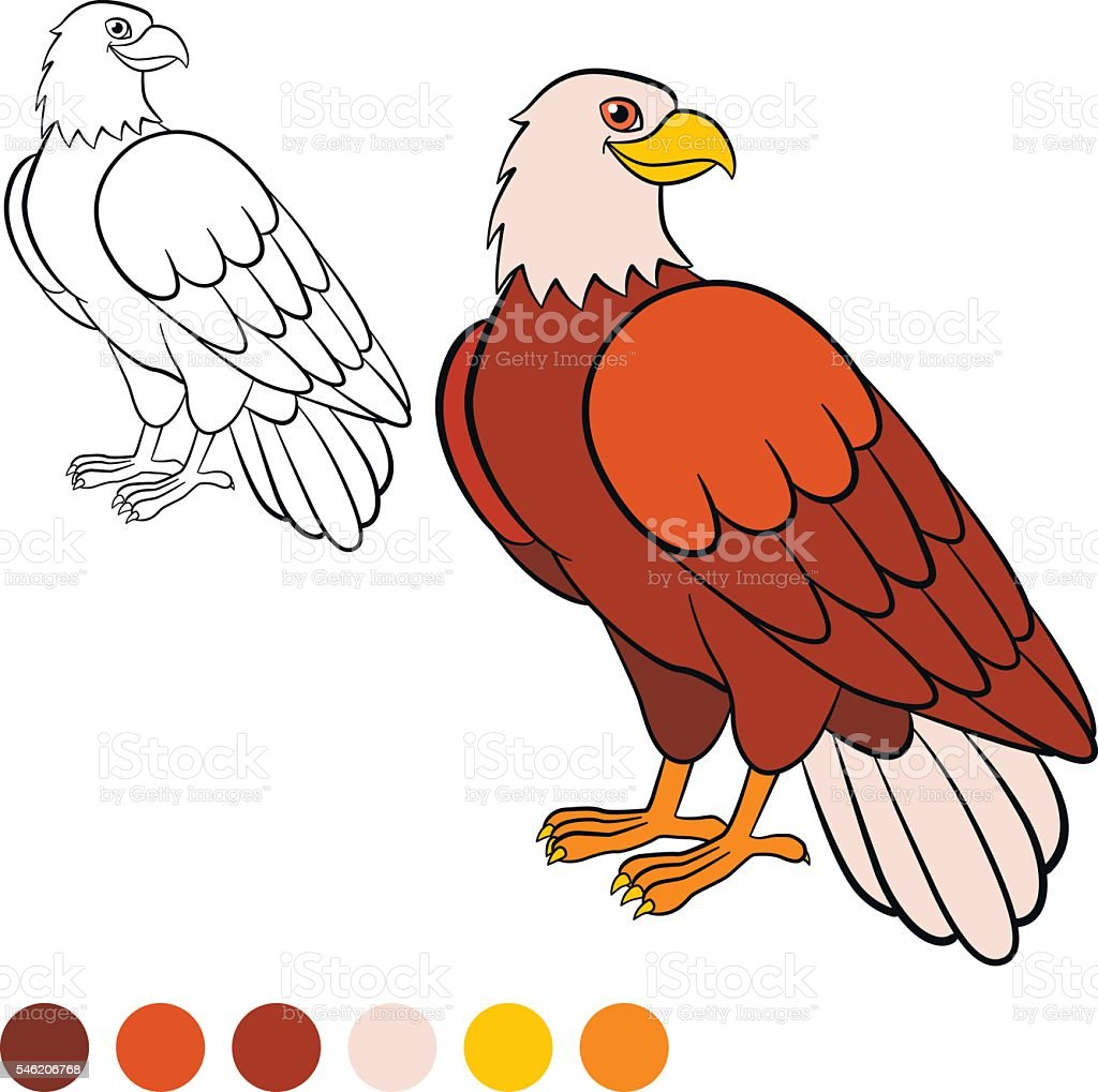 Coloring Page Color Me Eagle Cute Eagle Sits And Smiles Stock Vector ...