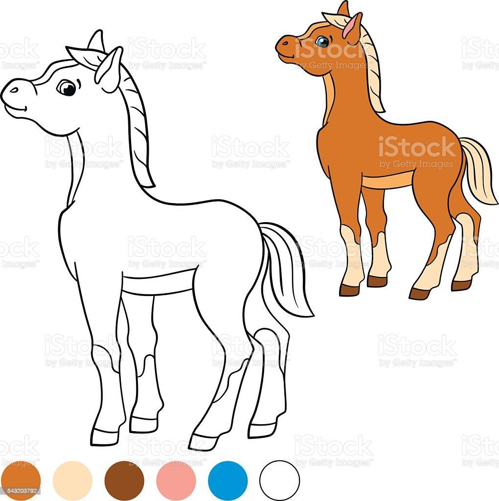 Ilustración de Colorear Página Me De Color Caballos Poco Lindo Potro ...
