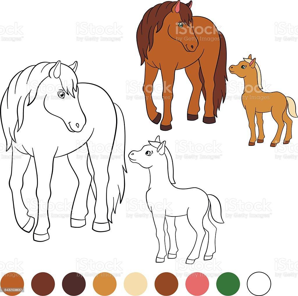 Coloration Page Couleur Moi Cheval Mere Cheval Et Poulain Vecteurs
