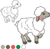 Coloring page. Color me: sheep.