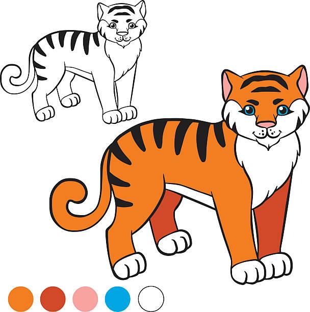 color me tiger vector art illustration