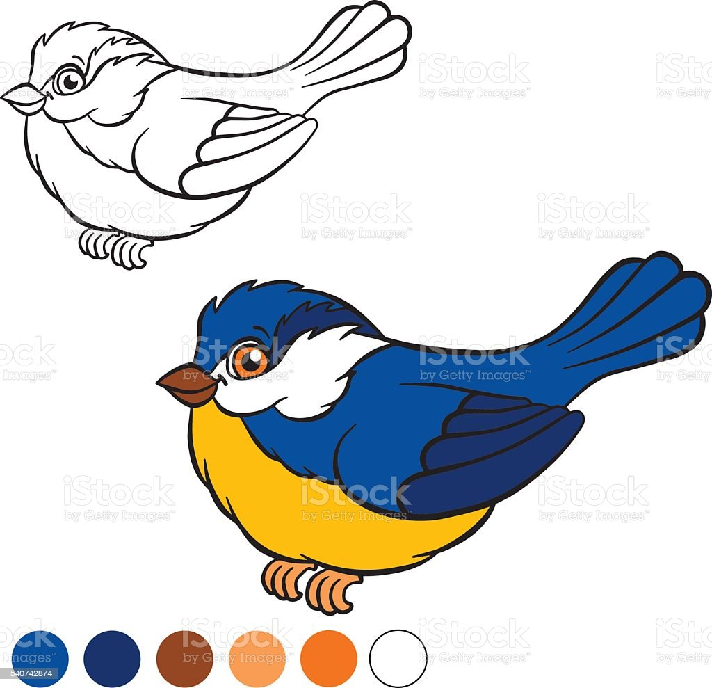 Coloring Page Color Me Titmouse Stock Vector Art More Images Of