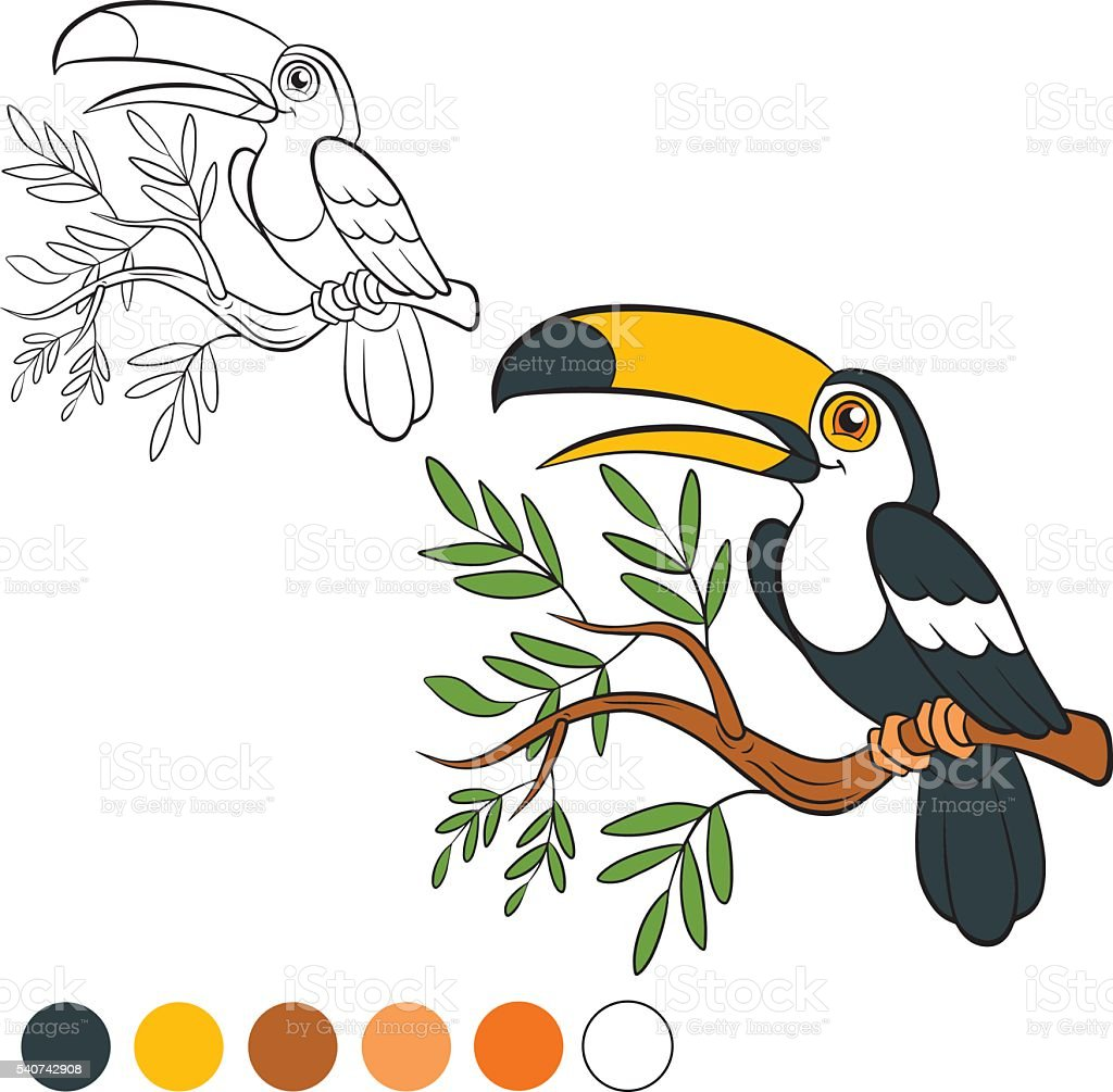 Ilustración De Colorear Página Me De Color Tucán Y Más Vectores