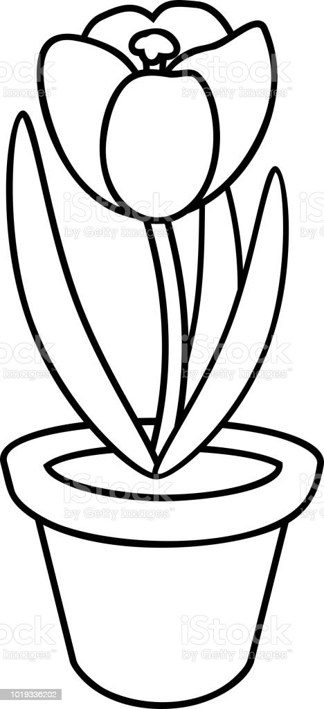 coloring page crocus flower in flowerpot stock vector