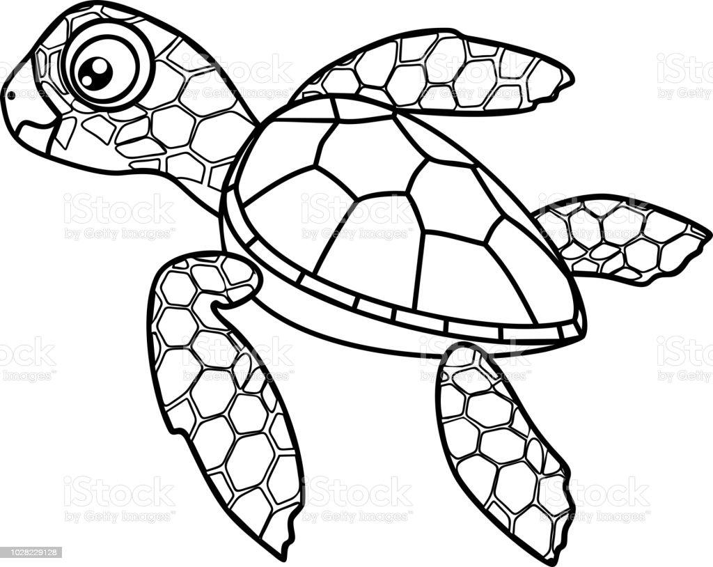 Malvorlagen Niedlichen Cartoon Jungtier Der Meeresschildkröte Stock ...