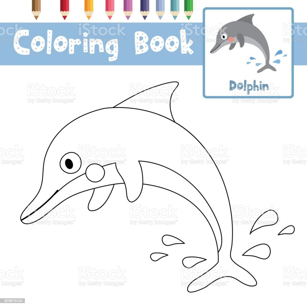 Coloring Page Dolphin Animal Cartoon Character Vector Illustration ...