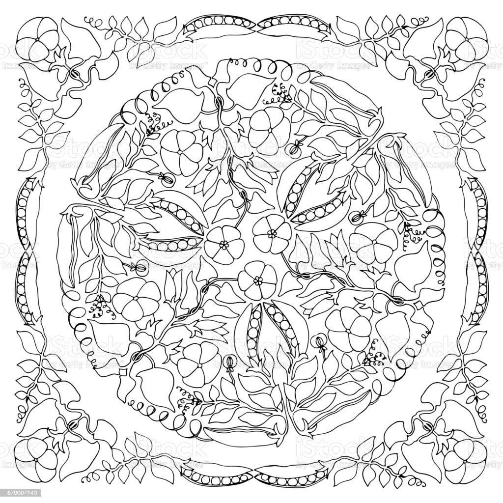 Malvorlagen Florale Ornamente Mandala Erbsen Und Ackerwinde Stock ...