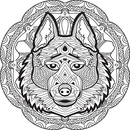 Coloring page for adults. Stern husky on a background
