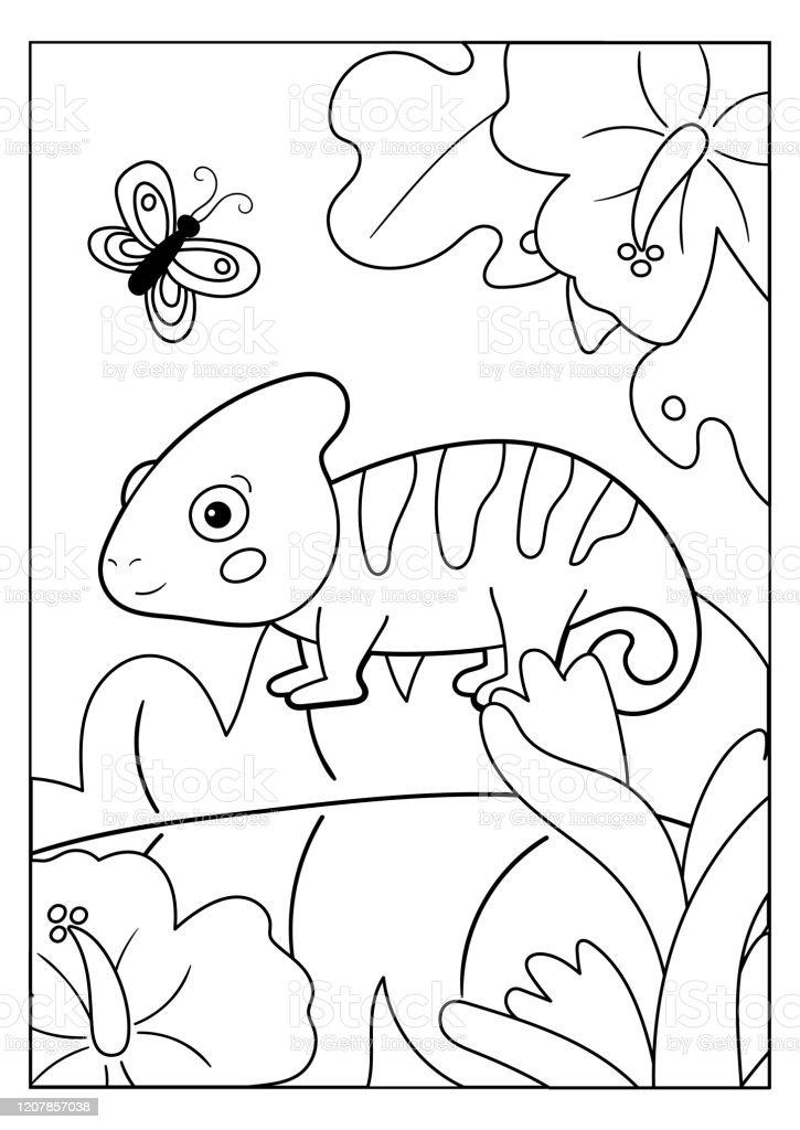 Ilustracion De Pagina Para Colorear Para Ninos Animales De La