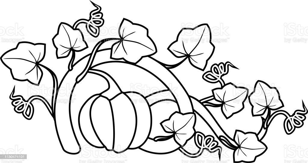 Boyama Sayfasi Olgun Meyve Ve Yapraklari Beyaz Arka Planda Izole