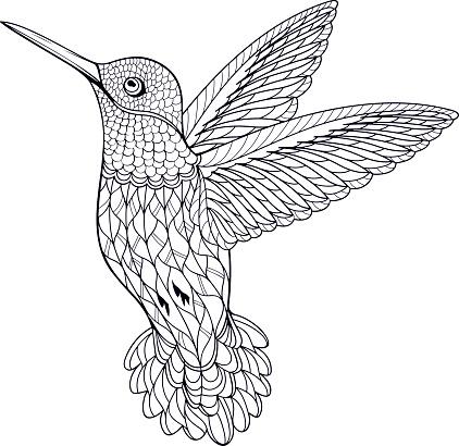 Coloring Page Hummingbird