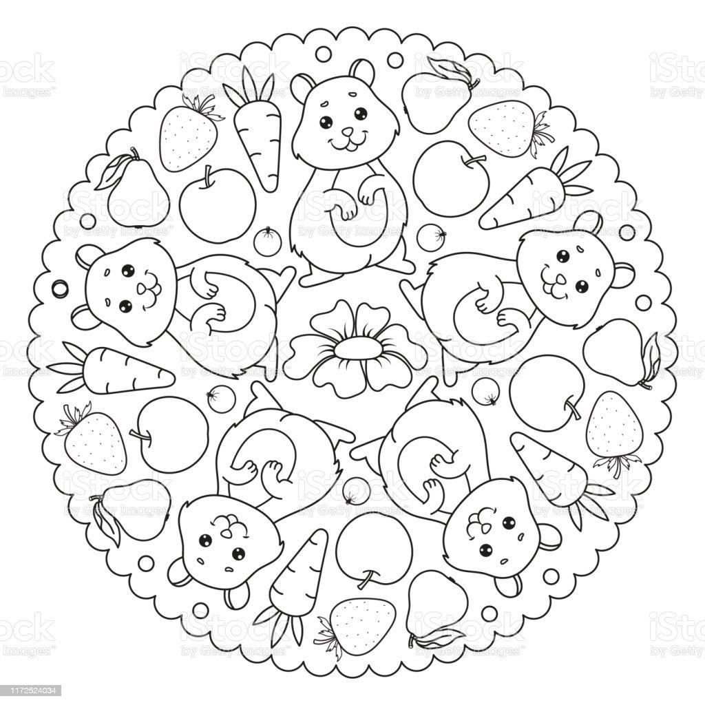 Hamster Havuc Elma Cilek Armut Cicek Ile Boyama Sayfasi Mandala
