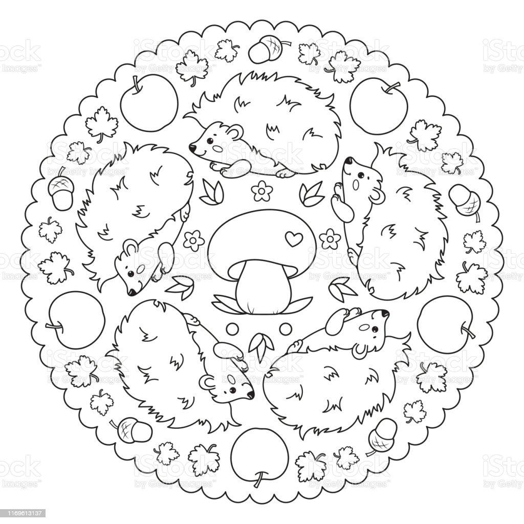 Färbung Seite Mandala Mit Igel Apfel Pilz Blätter Und Eicheln