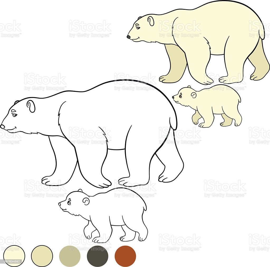 Coloring Page Mother Polar Bear With Her Cute Baby Stock Vector Art ...