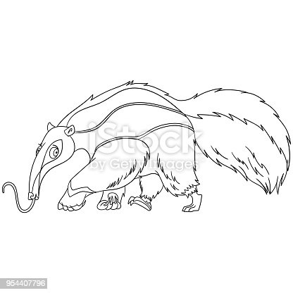 Coloring Page Of Cartoon Anteater Stock Vector Art More Images African Culture 954407796