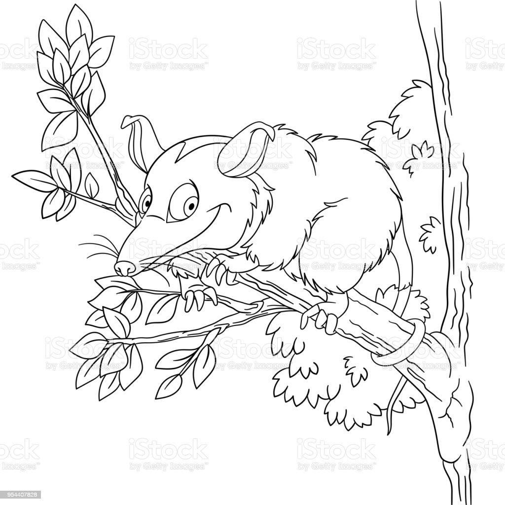 Malvorlagen Von Cartoon Opossum Stock Vektor Art und mehr Bilder von ...